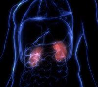 Коронавирус может состарить почки на 30 лет