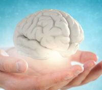 Как сохранить остроту ума и работоспособность мозга