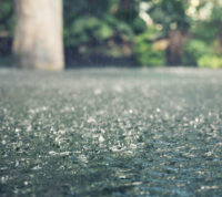 Погода влияет на заболеваемость тифом