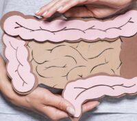 Лекарственные препараты могут накапливаться в кишечных бактериях и менять микробиом кишечника