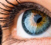 Турецкие и британские исследователи: по роговице глаза можно установить последствия коронавируса