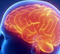 ВОЗ хочет «усмирить» менингит к 2030 году