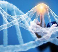 За риск болезни Альцгеймера и тяжелую форму коронавируса отвечает один ген
