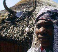 Народные целители помогают в диагностике ВИЧ-инфекции в Уганде