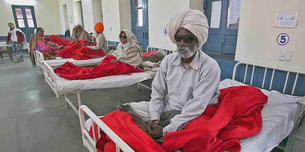 В Индии от свиного гриппа скончалась женщина